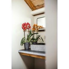 Pot orchidee Rib