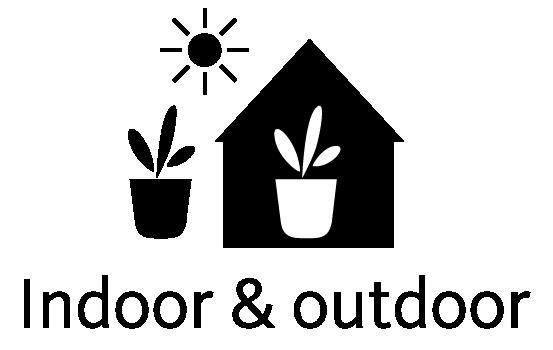 Indoor en Outdoor